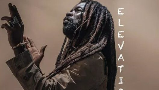 Rocky Dawuni – Elevation (Music Video)